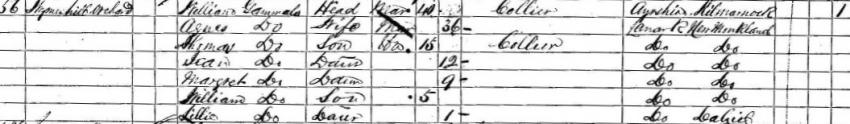 William Gemmell's 1861 Census Record